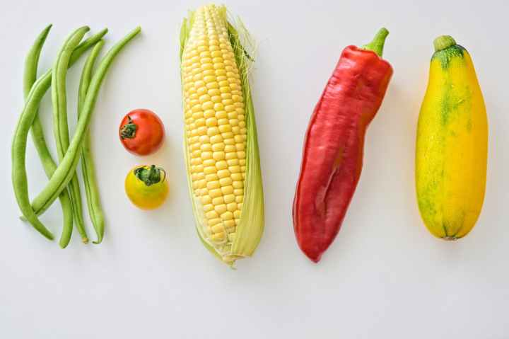 agriculture beans corn food